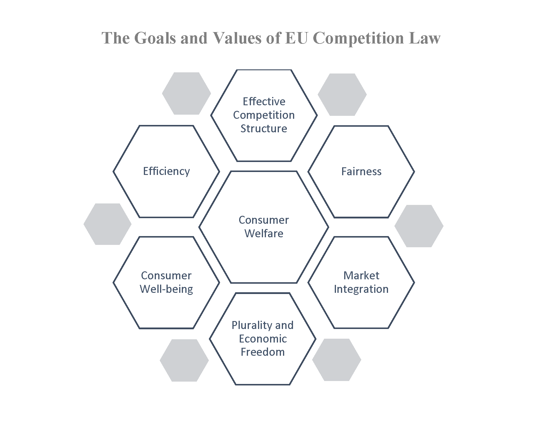 goals of competiton law and the China will develop its own competition law on its own terms and on the basis of  its own institutions, traditions, and goals, as it has in other recent contexts1 it is.