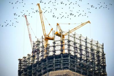 birds flying over construction site