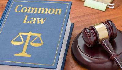 Common Law book and gavel