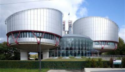 european convention on human rights article 3 cases